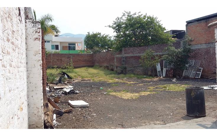 Foto de terreno habitacional en venta en  , centro, los reyes, michoac?n de ocampo, 1929642 No. 04