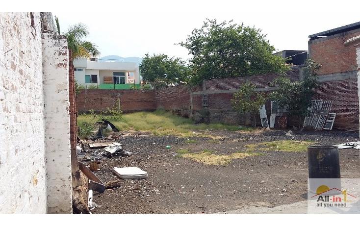 Foto de terreno habitacional en venta en  , centro, los reyes, michoac?n de ocampo, 1948212 No. 04