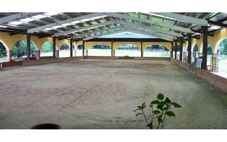 Foto de rancho en venta en centro , magdalena centro, magdalena, jalisco, 449240 No. 10