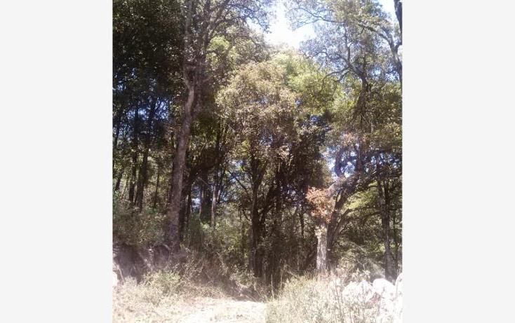 Foto de terreno habitacional en venta en  , centro minero, pachuca de soto, hidalgo, 1089513 No. 16