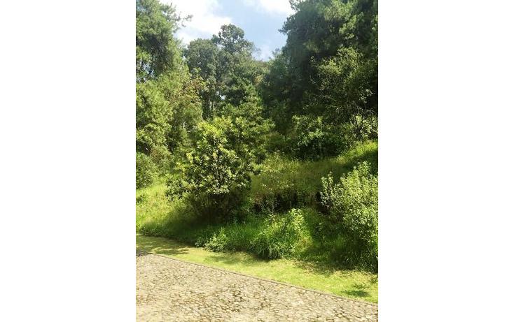 Foto de terreno habitacional en venta en  , centro ocoyoacac, ocoyoacac, m?xico, 1244761 No. 03