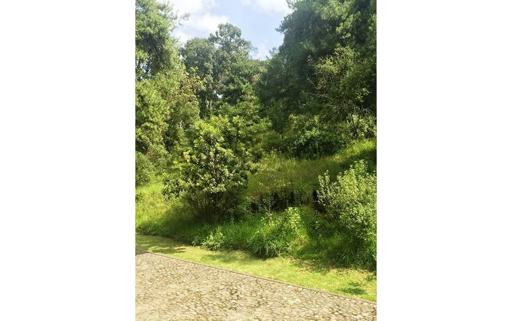 Foto de terreno habitacional en venta en  , centro ocoyoacac, ocoyoacac, m?xico, 1244765 No. 01