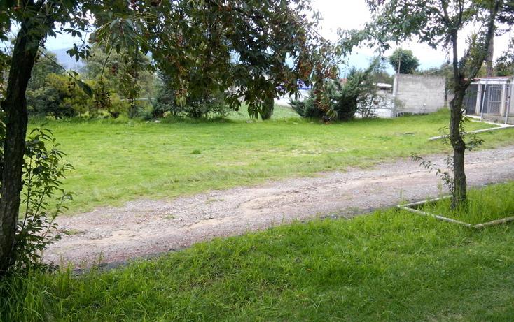 Foto de terreno comercial en venta en  , centro ocoyoacac, ocoyoacac, m?xico, 524641 No. 03