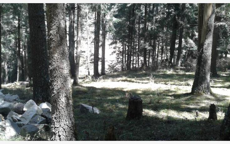 Foto de terreno habitacional en venta en  , centro, pachuca de soto, hidalgo, 3419157 No. 06