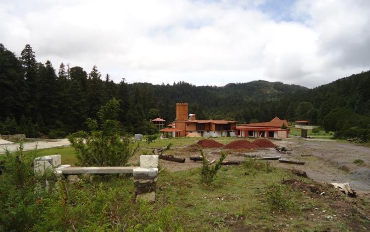 Foto de terreno habitacional en venta en  , centro, pachuca de soto, hidalgo, 972029 No. 12