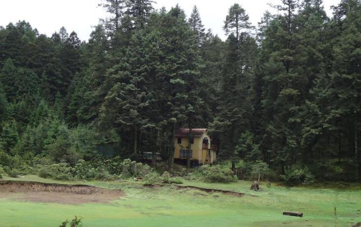 Foto de terreno habitacional en venta en  , centro, pachuca de soto, hidalgo, 972029 No. 13