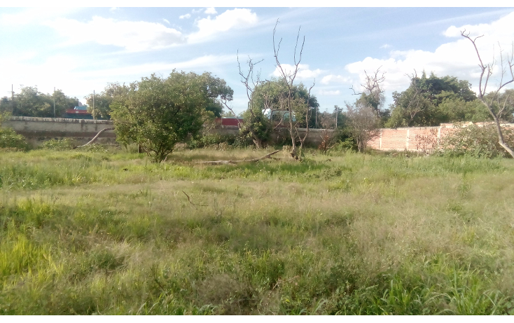 Foto de terreno habitacional en venta en  , centro, san juan del río, querétaro, 1252927 No. 03