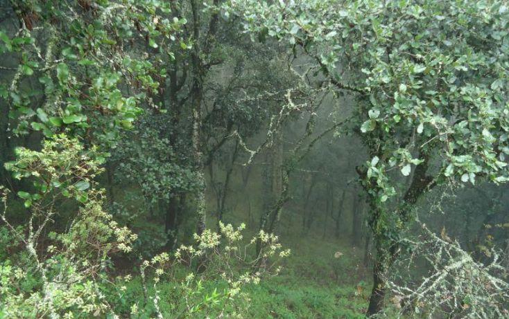 Foto de terreno habitacional en venta en, centro sct hidalgo, pachuca de soto, hidalgo, 972029 no 01
