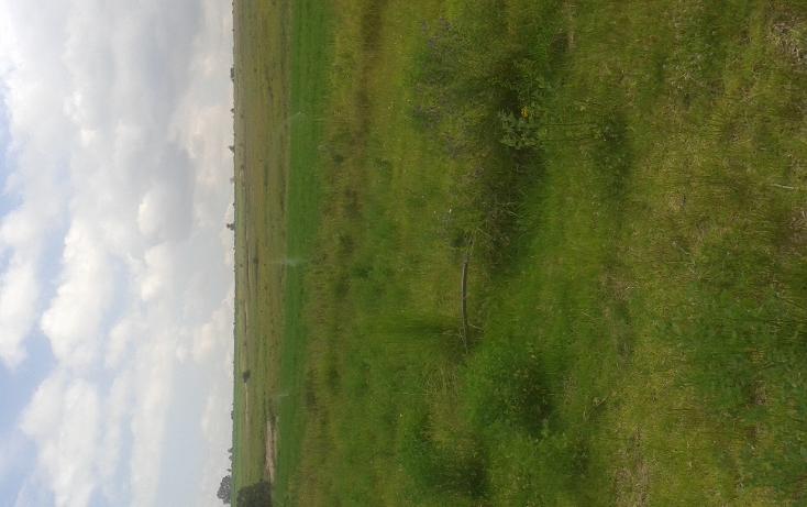 Foto de rancho en venta en  , centro urbano, aculco, m?xico, 1040389 No. 07