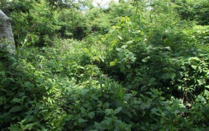 Foto de terreno habitacional en venta en, centro vacacional oaxtepec, yautepec, morelos, 1751546 no 05