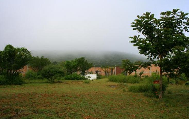 Foto de casa en venta en  , centro, xochitepec, morelos, 1298665 No. 10