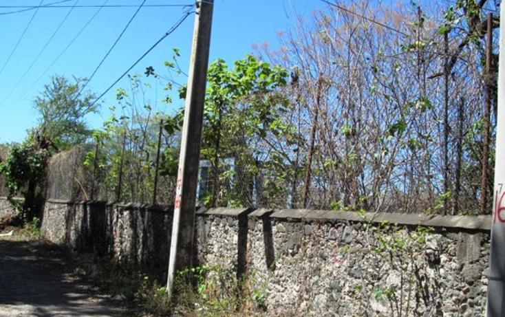 Foto de terreno habitacional en venta en  , centro, xochitepec, morelos, 1765276 No. 02