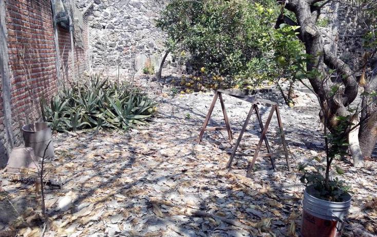 Foto de local en renta en  , centro, xochitepec, morelos, 822953 No. 05