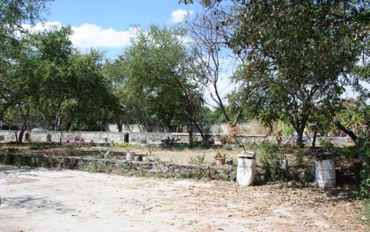 Foto de terreno comercial en venta en  , centro, xochitepec, morelos, 835069 No. 06
