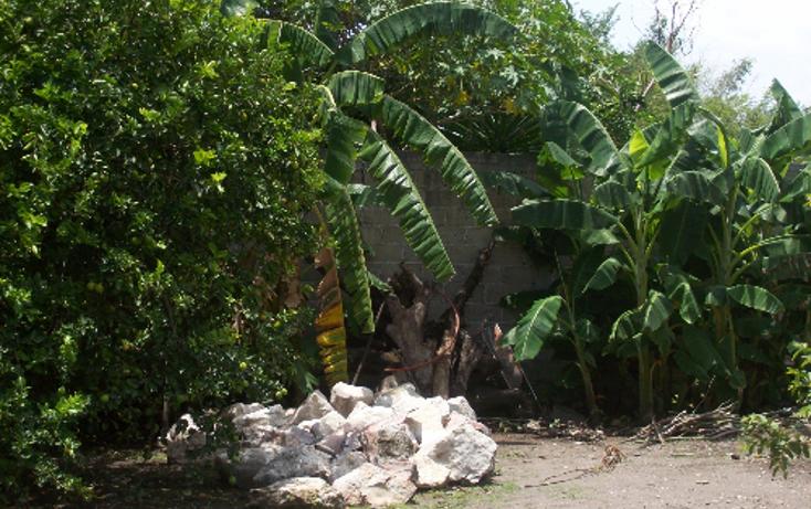 Foto de terreno comercial en venta en  , centro, yautepec, morelos, 1101737 No. 04