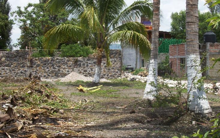 Foto de terreno comercial en venta en  , centro, yautepec, morelos, 1101737 No. 05