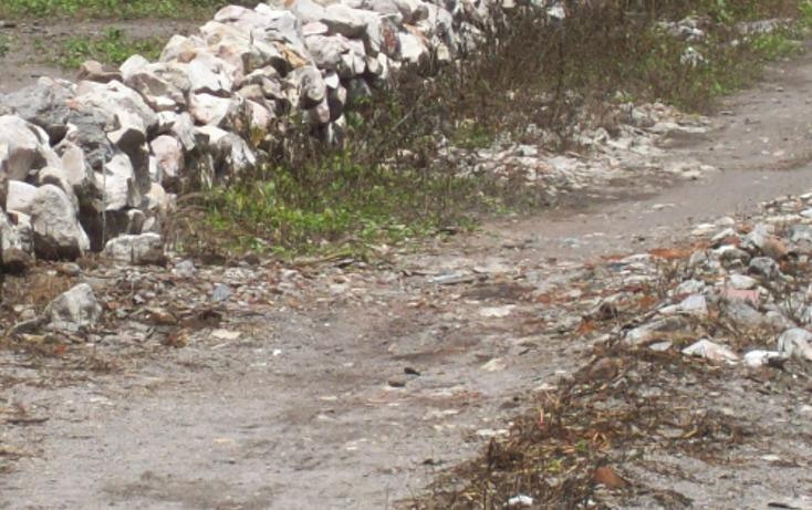 Foto de terreno comercial en venta en  , centro, yautepec, morelos, 1101737 No. 11