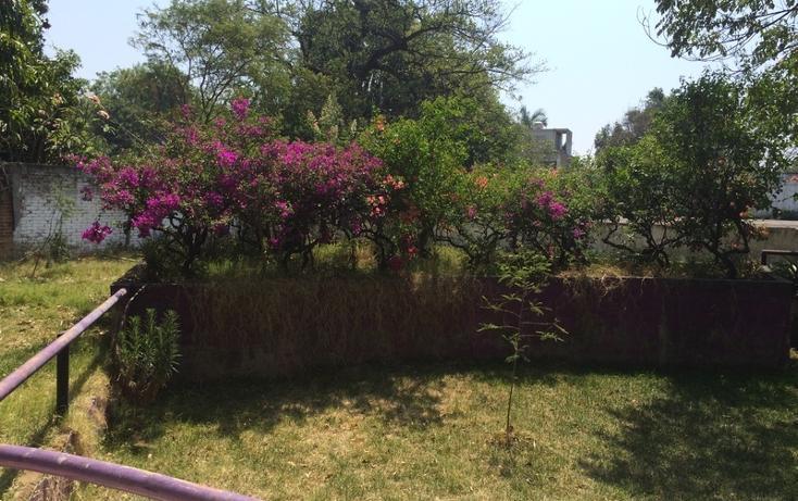 Foto de terreno habitacional en venta en  , centro, yautepec, morelos, 897903 No. 02