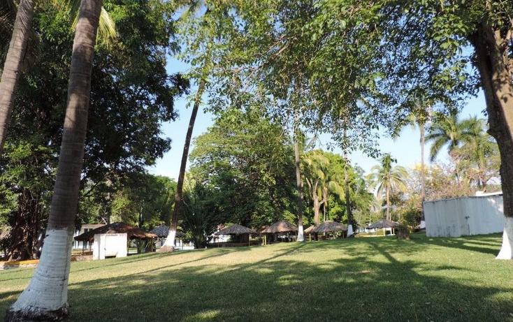 Foto de terreno comercial en venta en  , centro, zacatepec, morelos, 1975162 No. 15