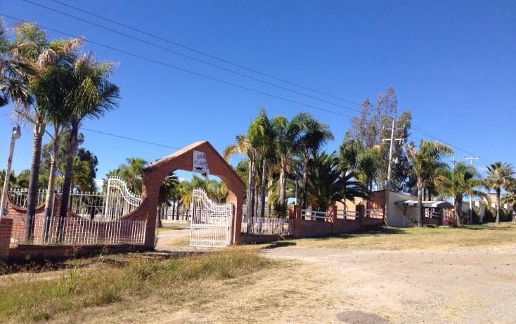 Foto de rancho en venta en  , cerca blanca, yahualica de gonzález gallo, jalisco, 1181949 No. 01