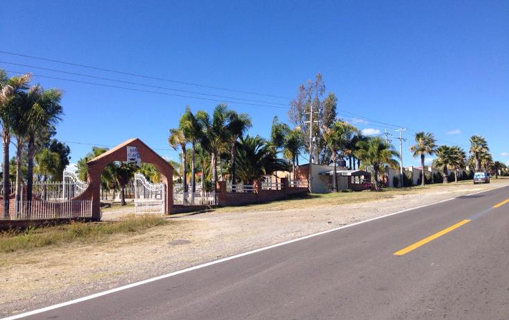 Foto de rancho en venta en  , cerca blanca, yahualica de gonzález gallo, jalisco, 1181949 No. 02