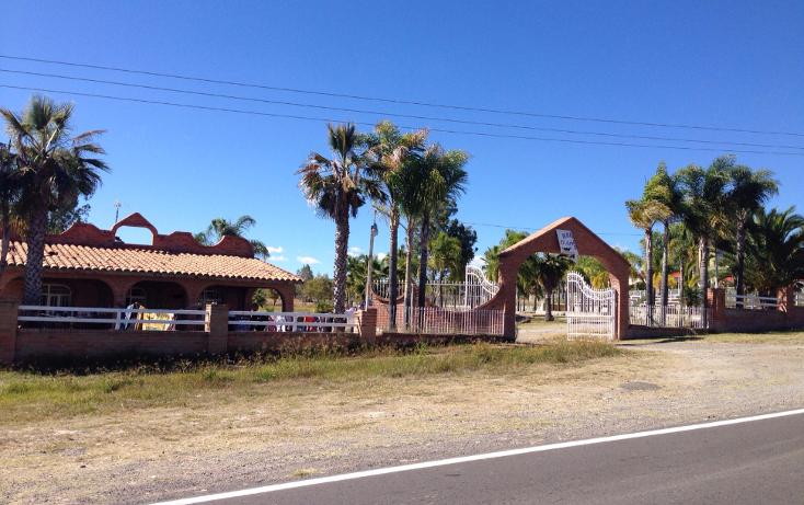 Foto de rancho en venta en  , cerca blanca, yahualica de gonzález gallo, jalisco, 1181949 No. 03