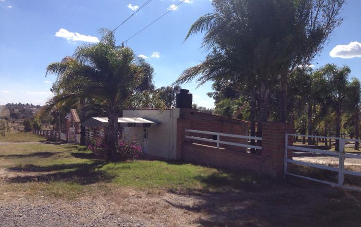 Foto de rancho en venta en  , cerca blanca, yahualica de gonzález gallo, jalisco, 1181949 No. 04
