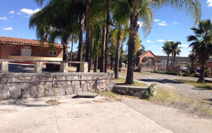 Foto de rancho en venta en  , cerca blanca, yahualica de gonzález gallo, jalisco, 1181949 No. 05