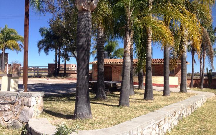 Foto de rancho en venta en  , cerca blanca, yahualica de gonzález gallo, jalisco, 1181949 No. 06