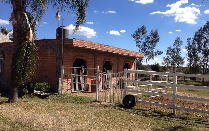Foto de rancho en venta en  , cerca blanca, yahualica de gonzález gallo, jalisco, 1181949 No. 07