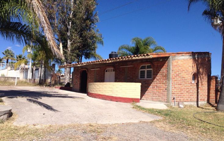 Foto de rancho en venta en  , cerca blanca, yahualica de gonzález gallo, jalisco, 1181949 No. 08