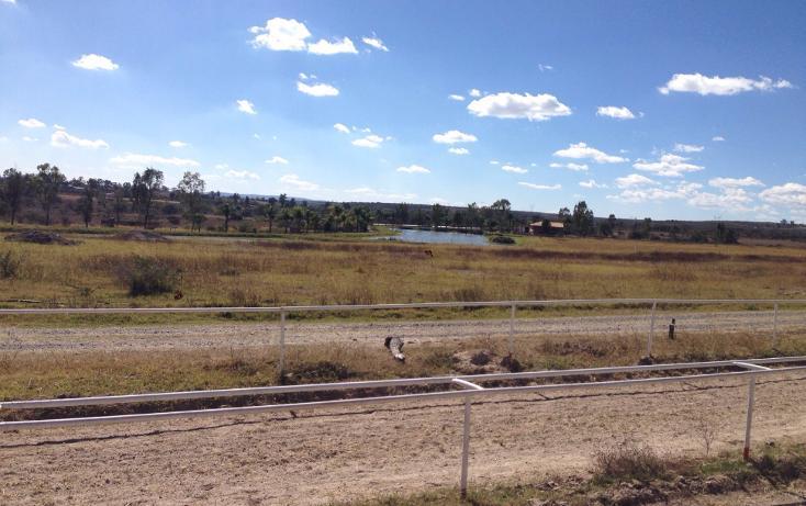 Foto de rancho en venta en  , cerca blanca, yahualica de gonzález gallo, jalisco, 1181949 No. 09
