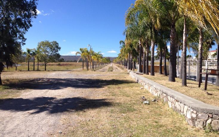 Foto de rancho en venta en  , cerca blanca, yahualica de gonzález gallo, jalisco, 1181949 No. 10