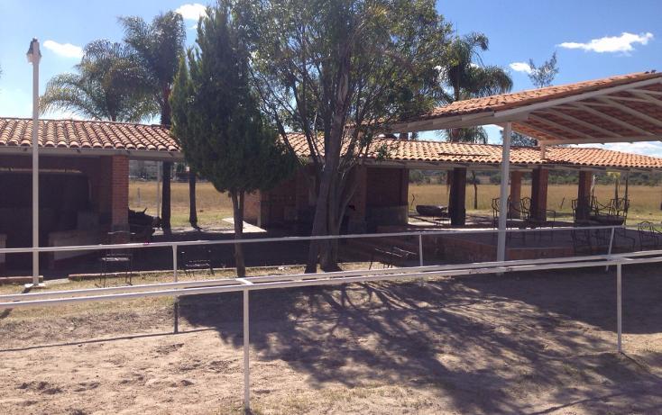 Foto de rancho en venta en  , cerca blanca, yahualica de gonzález gallo, jalisco, 1181949 No. 12