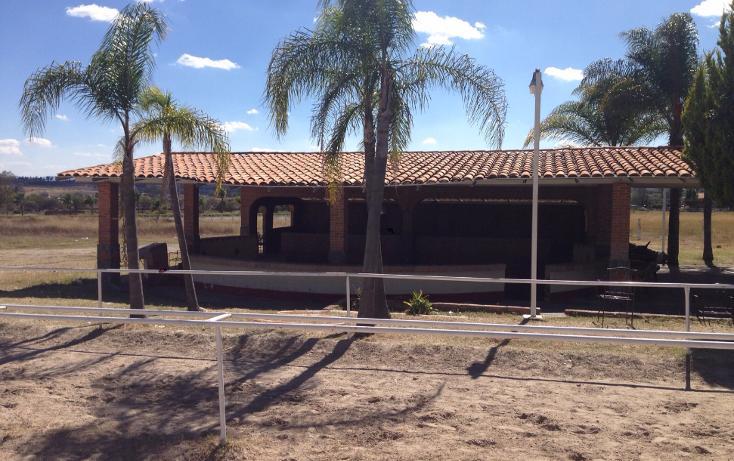 Foto de rancho en venta en  , cerca blanca, yahualica de gonzález gallo, jalisco, 1181949 No. 13