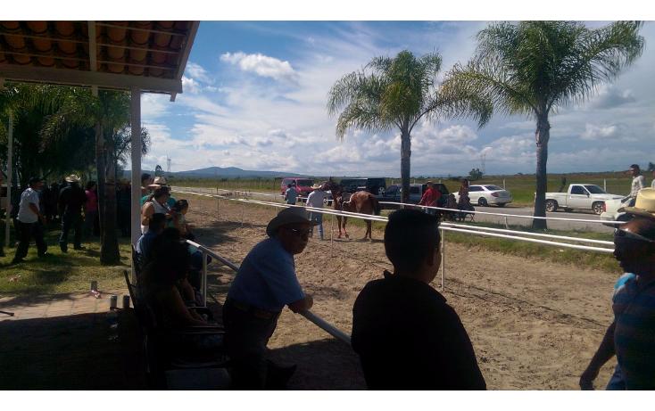 Foto de rancho en venta en  , cerca blanca, yahualica de gonzález gallo, jalisco, 1181949 No. 15