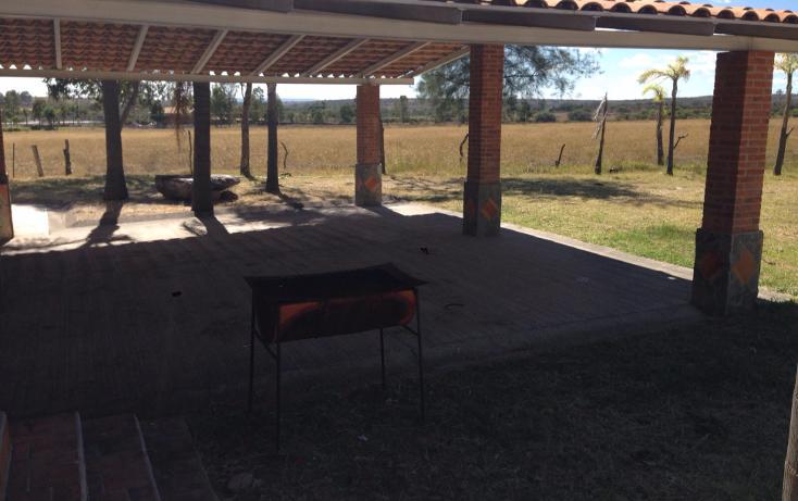 Foto de rancho en venta en  , cerca blanca, yahualica de gonzález gallo, jalisco, 1181949 No. 16