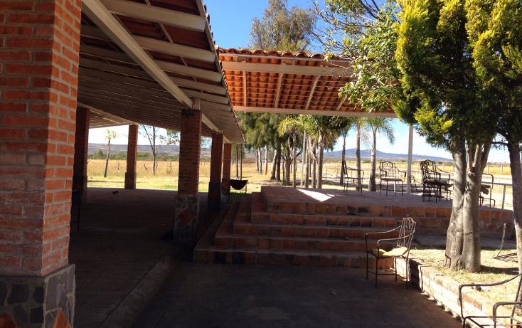 Foto de rancho en venta en  , cerca blanca, yahualica de gonzález gallo, jalisco, 1181949 No. 17
