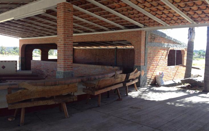 Foto de rancho en venta en  , cerca blanca, yahualica de gonzález gallo, jalisco, 1181949 No. 29