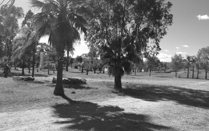 Foto de rancho en venta en  , cerca blanca, yahualica de gonzález gallo, jalisco, 1181949 No. 33