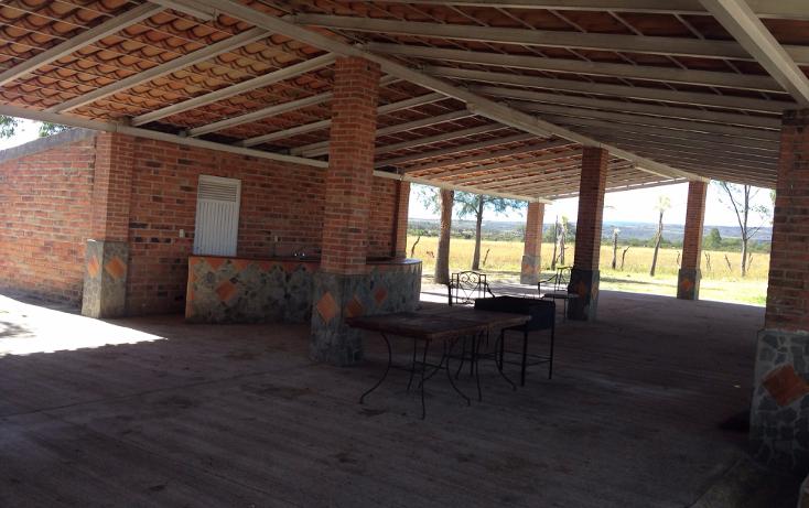 Foto de rancho en venta en  , cerca blanca, yahualica de gonzález gallo, jalisco, 1181949 No. 36