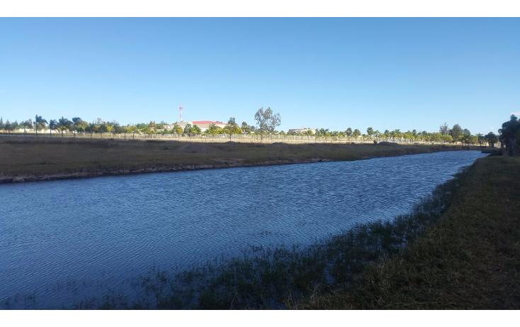 Foto de rancho en venta en  , cerca blanca, yahualica de gonzález gallo, jalisco, 1181949 No. 48