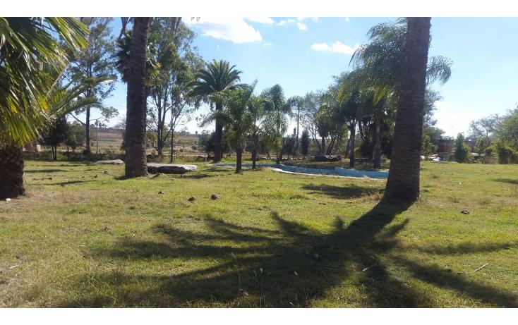 Foto de rancho en venta en  , cerca blanca, yahualica de gonzález gallo, jalisco, 1181949 No. 55