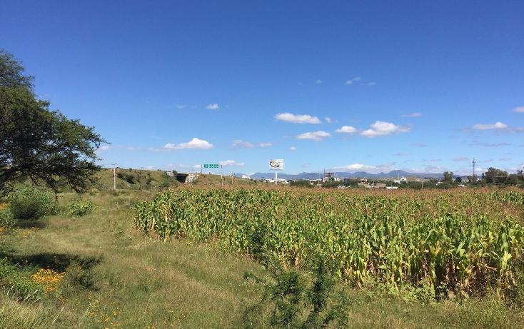 Foto de terreno comercial en venta en  , cerritos, silao, guanajuato, 1677656 No. 03