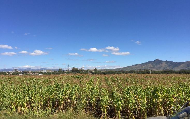 Foto de terreno comercial en venta en  , cerritos, silao, guanajuato, 1677656 No. 05