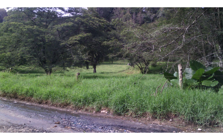 Foto de terreno habitacional en venta en  , cerro colorado, xalapa, veracruz de ignacio de la llave, 1062769 No. 01