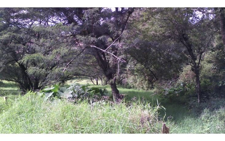 Foto de terreno habitacional en venta en  , cerro colorado, xalapa, veracruz de ignacio de la llave, 1062769 No. 02