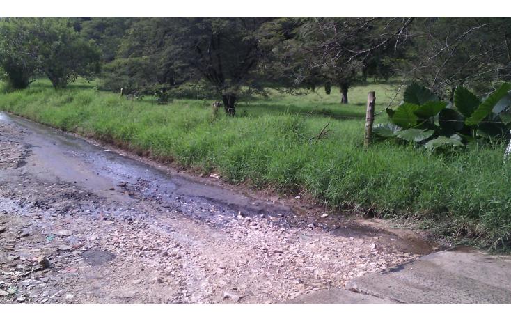 Foto de terreno habitacional en venta en  , cerro colorado, xalapa, veracruz de ignacio de la llave, 1062769 No. 06