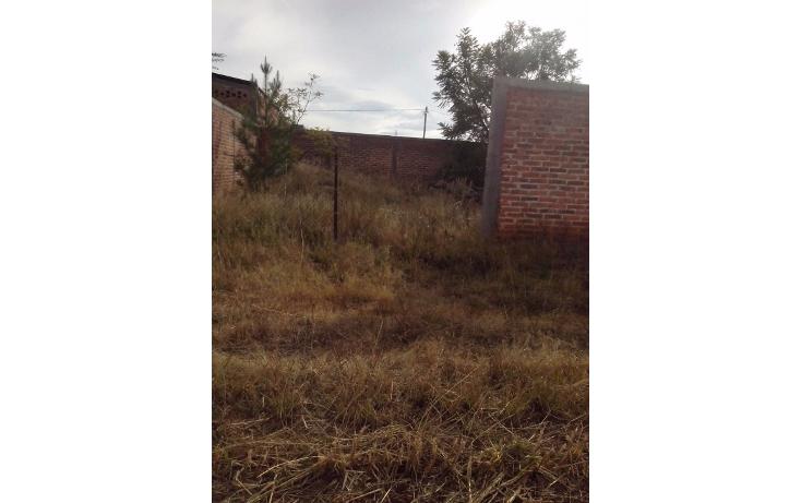 Foto de terreno habitacional en venta en  , cerro de mexiquito, arandas, jalisco, 1371023 No. 03