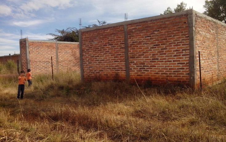 Foto de terreno habitacional en venta en  , cerro de mexiquito, arandas, jalisco, 1371023 No. 05